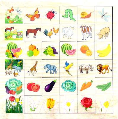 Развивающая игрушка Paremo Ассоциации. Окружающий мир / PE720-91