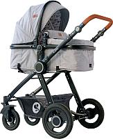 Детская универсальная коляска Lorelli Alexa Dark Grey Lighthouse / 10021262067 -