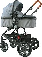 Детская универсальная коляска Lorelli Lora 3 в 1 Grey Lighthose / 10021282057 -