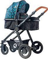 Детская универсальная коляска Lorelli Alexa 3 в 1 Black Leaves / 10021292064 -