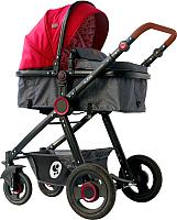 Детская универсальная коляска Lorelli Alexa 3 в 1 Red Black Lighthouse / 10021292069 -