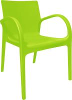 Стул пластиковый Алеана Гектор (оливковый) -