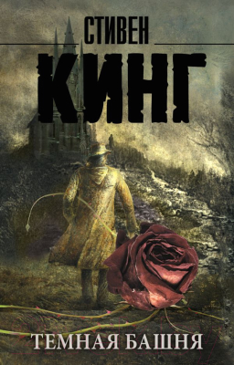 Книга АСТ Темная Башня: из цикла Темная Башня (Кинг С.)