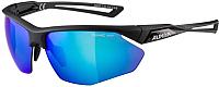 Очки солнцезащитные Alpina Sports Nylos HR / A86353-30 (черный) -