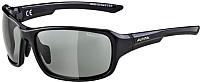 Очки солнцезащитные Alpina Sports Lyron VL / A86291-31 (черный) -