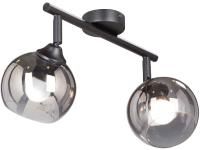 Потолочный светильник Vitaluce V4313-1/2PL -