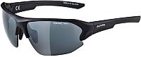 Очки солнцезащитные Alpina Sports Lyron HR / A86323-31 (черный матовый) -