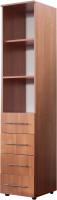 Стеллаж Компас-мебель КС-005-9Д1 (ольха) -