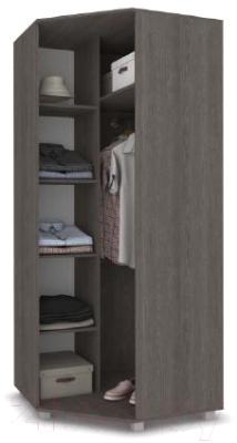 Шкаф Modern Виора В59 (анкор темный/анкор светлый)