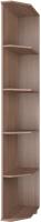 Угловое окончание для шкафа Modern Ева Е65 (ясень шимо темный) -