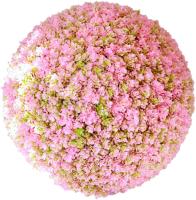 Искусственное растение Green Fly Самшит Роза / С-17-22 -
