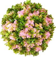 Искусственное растение Green Fly Самшит Магнолия / С-18-28 -