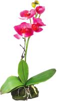 Декорация для террариума Lucky Reptile Orchid Pink / IF-11 (розовый) -