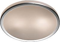 Потолочный светильник Odeon Light Yun 2177/2C -
