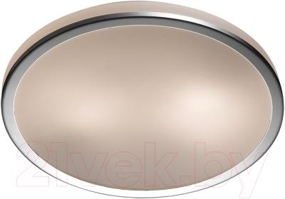 Потолочный светильник Odeon Light Yun 2177/2C