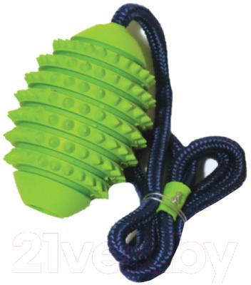 Игрушка для собак Rosewood Мяч регби игольчатый на веревке / 20065/RW