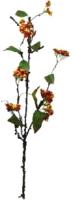 Декорация для террариума Lucky Reptile Twig with Berries / IF-35 -