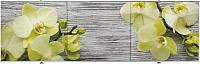 Экран для ванны Comfort Alumin Древесная орхидея 3D 150x50 -