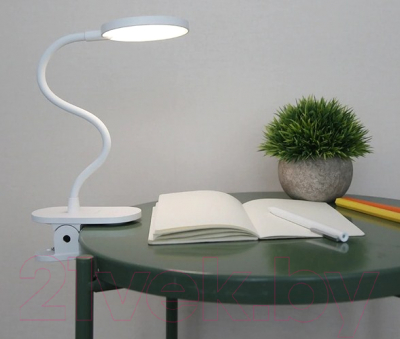 Настольная лампа Yeelight Rechargeable Desk Clamp Lamp J1 Pro / YLTD12YL