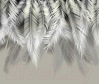 Фотообои листовые Citydecor Пальмовые листья