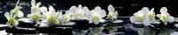 Скиналь Оптион Цветы. Искушение 105 (стекло, 2800x600x3) -