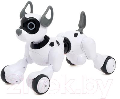 Радиоуправляемая игрушка Sima-Land Робот-собака Koddy / 4376315