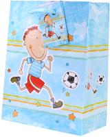 Пакет подарочный Darvish DV-9814 (детский) -