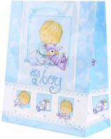 Пакет подарочный Darvish DV-9817 (детский) -