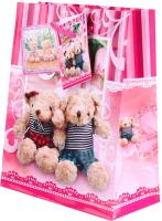 Пакет подарочный Darvish DV-9811 (детский) -