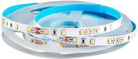 Светодиодная лента Truenergy 12V-2835 6000K 16004 -