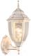 Бра уличное Arte Lamp Pegasus A3151AL-1WG -