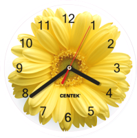 Настенные часы Centek СТ-7102 (цветы) -