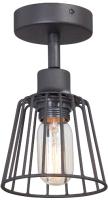 Потолочный светильник Vitaluce V4589-1/1PL -
