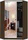 Шкаф Кортекс-мебель Сенатор ШК30 Классика зеркало (венге) -
