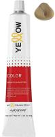 Крем-краска для волос Yellow Color Rich Cool 9 (100мл) -