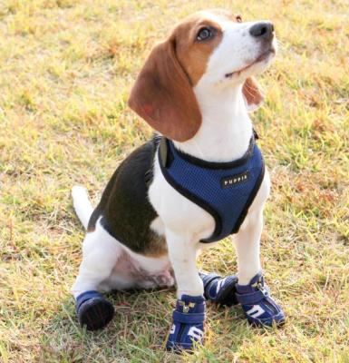Кеды для собак Puppia Hiker / PAMD-SH065-RB-M (синий)