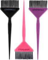 Набор кистей для окрашивания волос FRAMAR Big Daddy (3шт) -