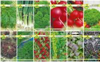 Набор семян АПД Зелень прямо с грядки / A105071 -