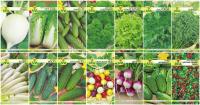 Набор семян АПД Витаминный салат / A105091 -
