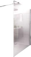 Душевая стенка Roth Walk Pro 100 (хром/прозрачное стекло) -