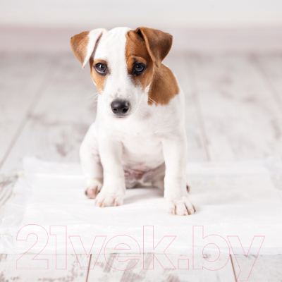 Одноразовая пеленка для животных Duvo Plus С ароматом свежей травы 45x60 / 11500/DV (30шт)