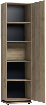 Комплект полок для шкафа Глазов Oslo 19 (дуб серый Craft)
