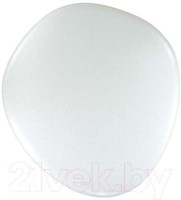 Потолочный светильник Sonex Stone 2039/EL (с пультом управления)
