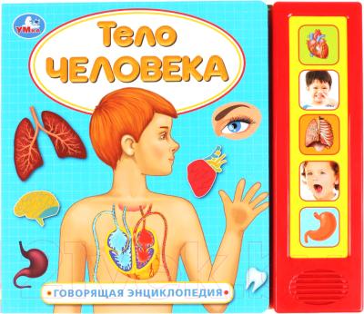 Музыкальная книга Умка Тело человека / 9785506033844