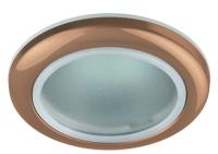 Точечный светильник ЭРА WR1 SC / C0043844 -