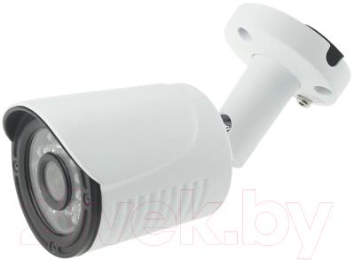 IP-камера Longse LS-IP202P/60