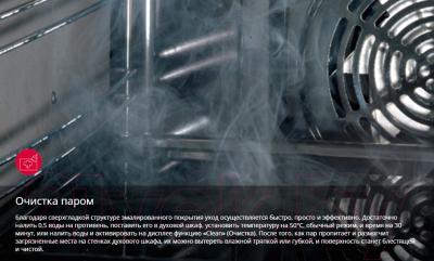 Плита газовая Hansa FCMW580254