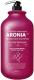 Шампунь для волос Evas Pedison Institute-beaut Aronia Color Protection (2л) -