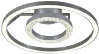 Потолочный светильник FAVOURITE Sanori 2593-2U -