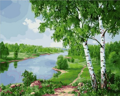 Картина по номерам Picasso Березы над рекой (PC4050655)